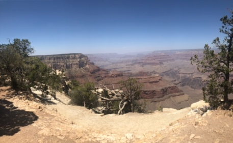 The Grand Canyon was stunning!
